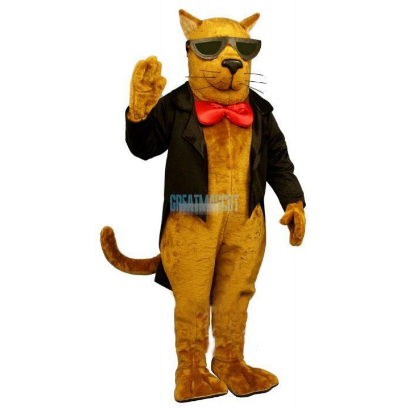 Strayed Cat Lightweight Mascot Costume