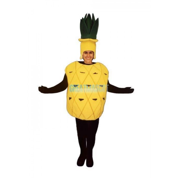 Childs Pineapple Lightweight Mascot Costume