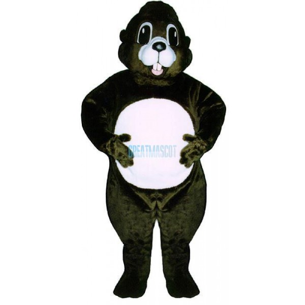Happy Groundhog Lightweight Mascot Costume