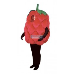 Fresh Raspberry Lightweight Mascot Costume