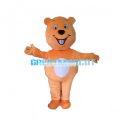 Cute Cartoon Orange Bear Mascot Costume For Adult