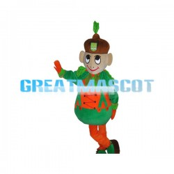 Cute Boy Mascot Fancy Dress Costume