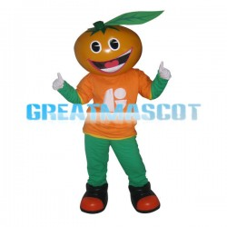 Smiling Orange Cartoon Mascot Fancy Dress Costume