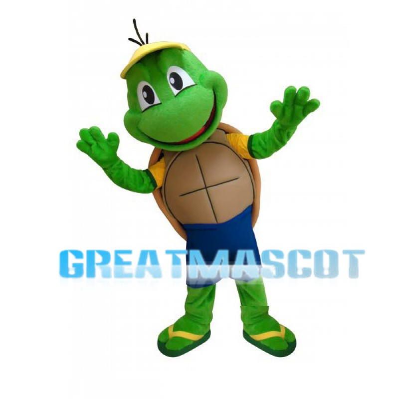 Cute Cartoon Green Turtle Mascot  Adult Costume