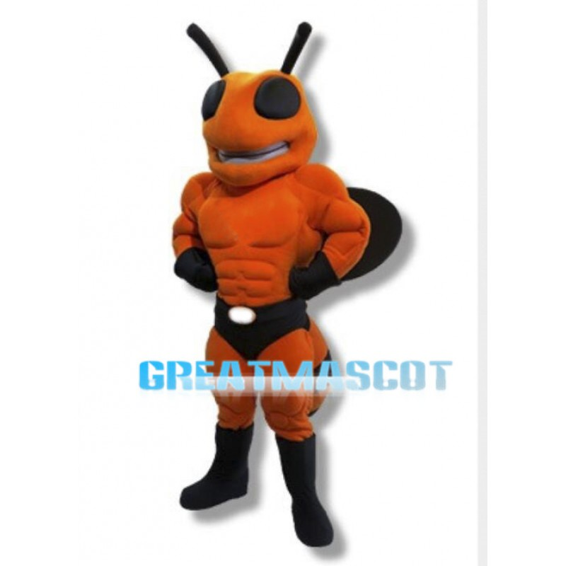 Power Yellowjacket High School Mascot Costume
