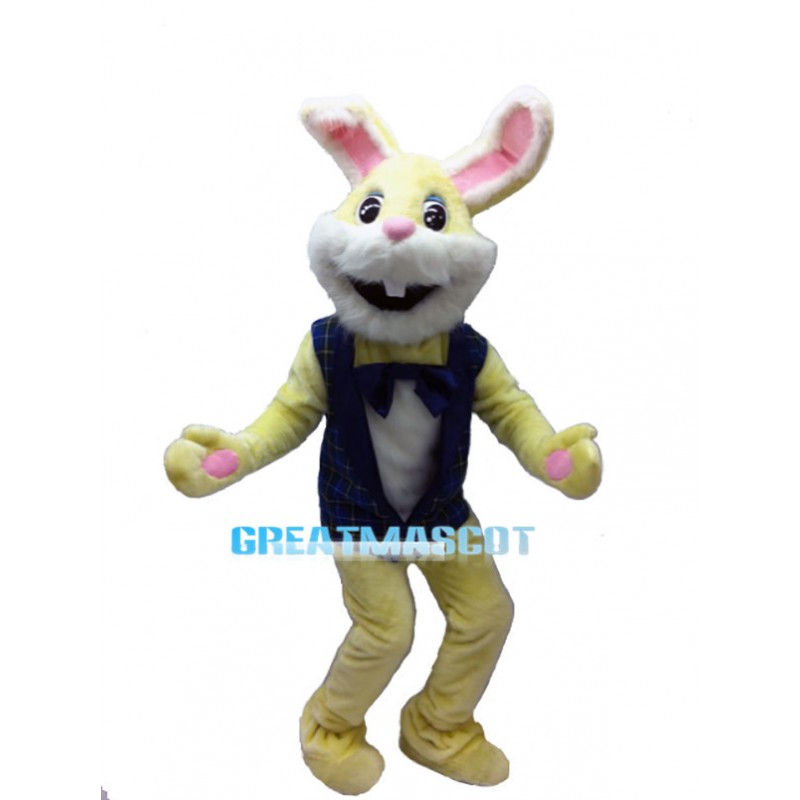 Lovely Yellow Easter Bunny Mascot Costume