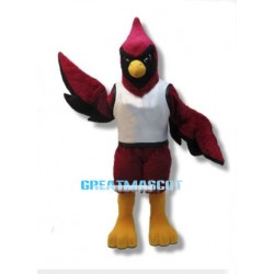 Cardinal Bird High School Mascot Adult Costume