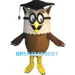 Cartoon Owl Doctor Lightweight Mascot Costume