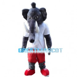 Adult Elephant With White Shirt Mascot Costume
