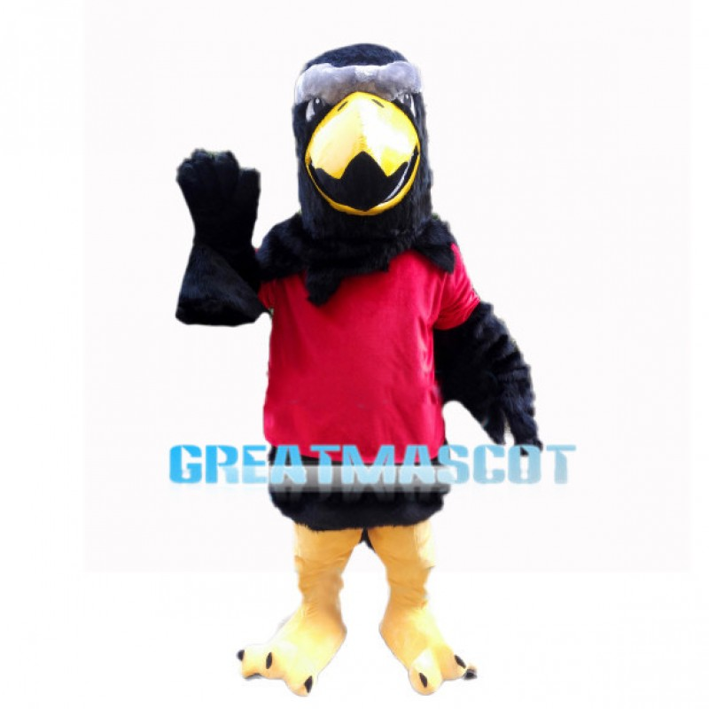 Amicable Eagle With Black Wings Mascot Costume