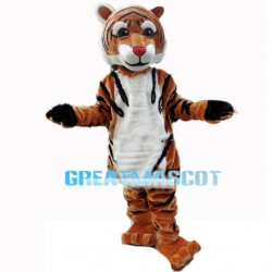 Veridical Young Tiger Mascot Costume