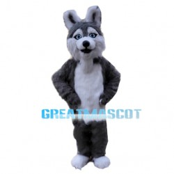 Furry Wolf With Light Blue Eyes Mascot Costume