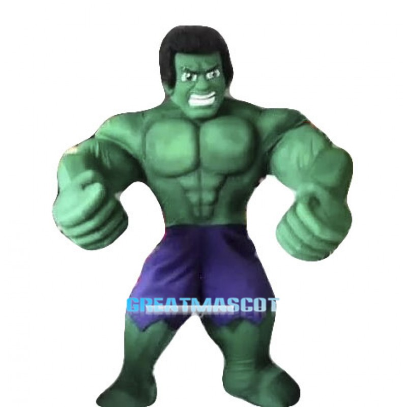 Hot Sale Hulk The Avengers Mascot Costumes