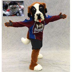 Colorado Avalanche mascot Bernie inset Howler the Yeti