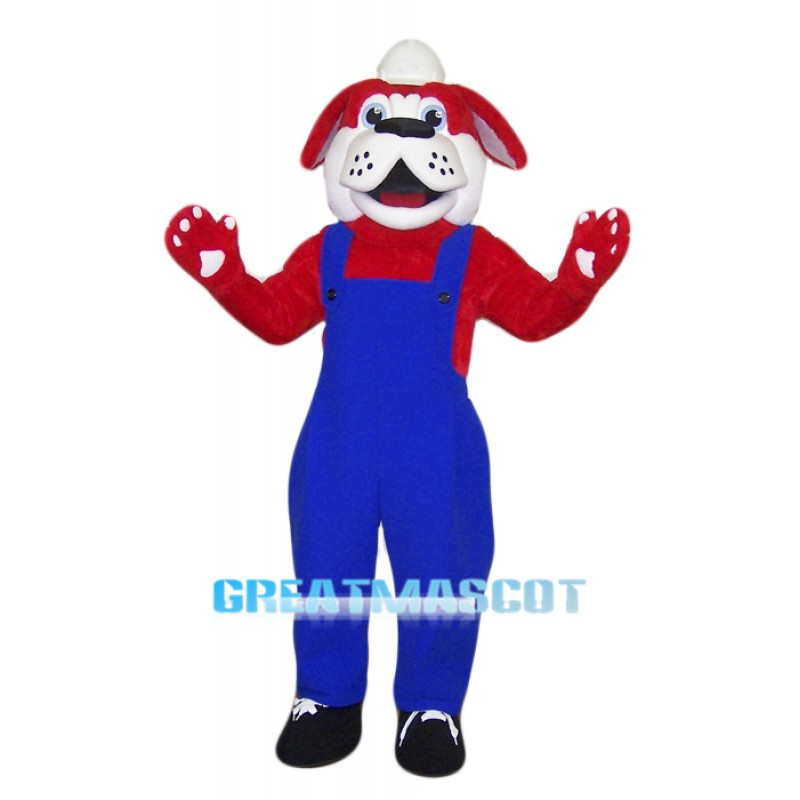 Doctor Red Dog Mascot Costume