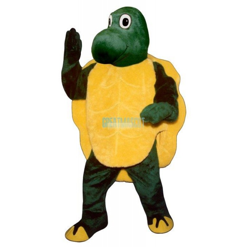 Slow Turtle Mascot Costume