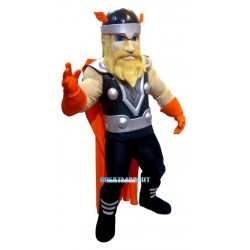 Vikings Mascot Costume Free Shipping