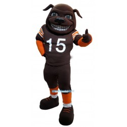 Sun Football Bull Mastiff Mascot Costume