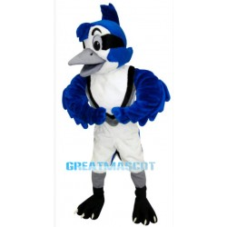 Cute Blue Jay Mascot Costume