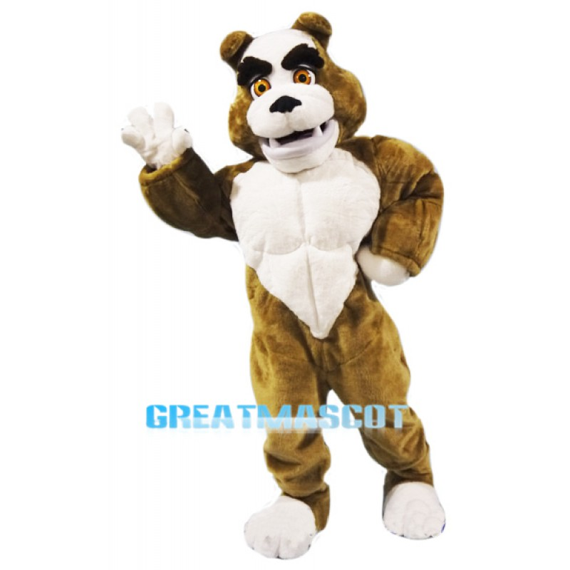 Power Muscular Bulldog Mascot Costume