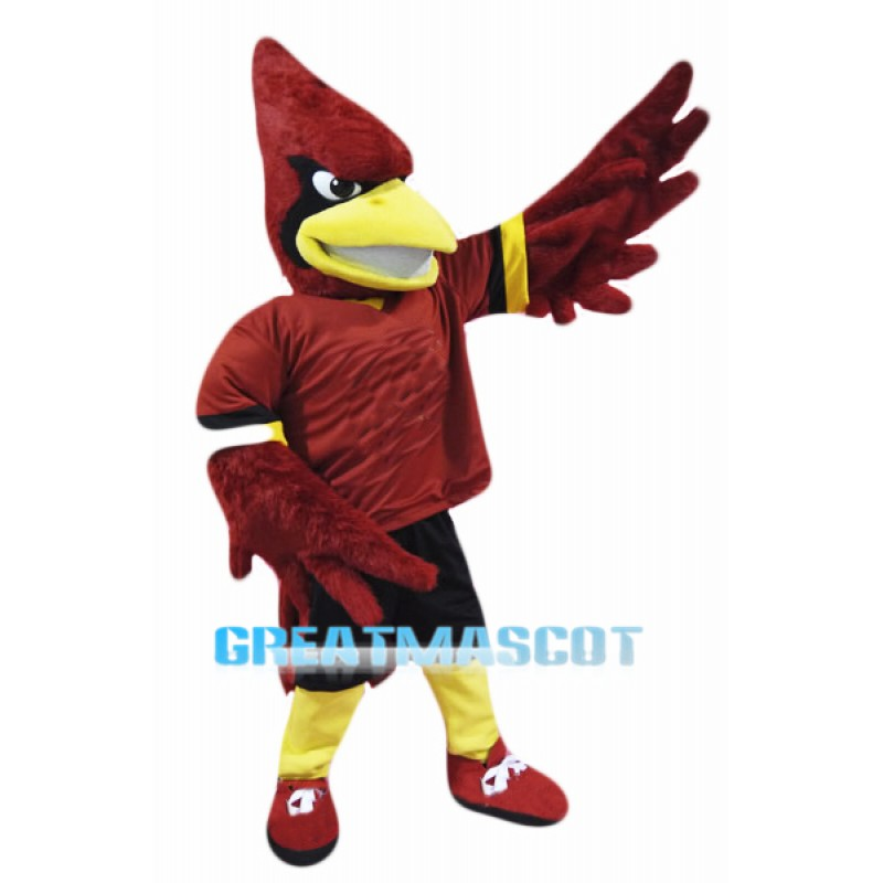 New Parrot Cardinal Mascot Costume Adult SIZE CARTOON