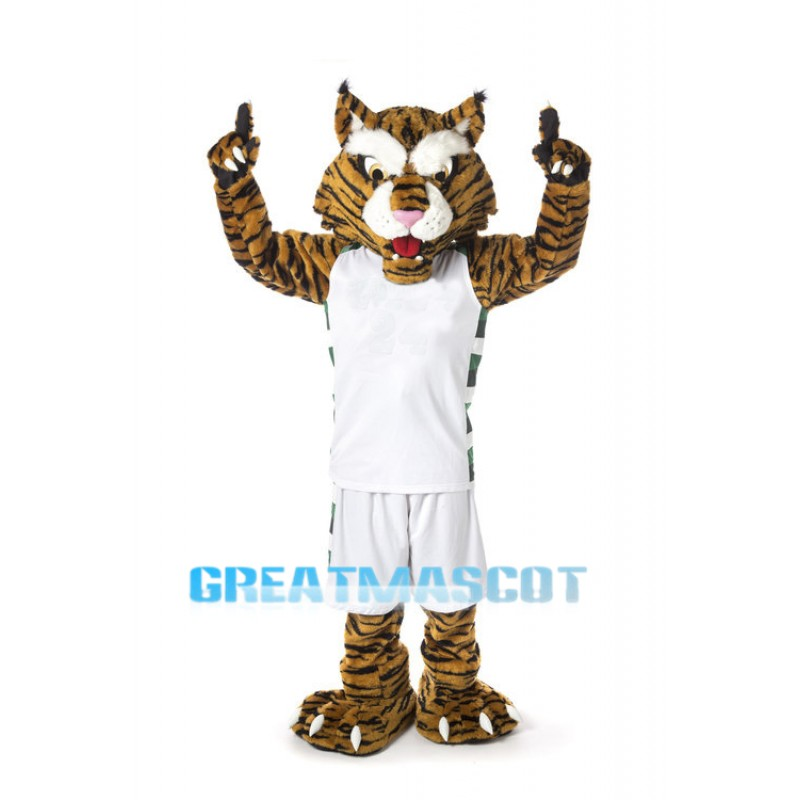 High School Lightweight Wildcats Mascot Costume